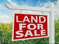 do you have land for sale please email me