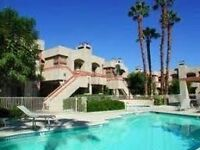 Beautiful Palm Springs Condo available for December & April