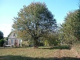 Building plot for sale in Morbihan, Brittany in quiet village near to all amenities