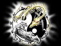 Martial Arts - Weapons training – Unarmed Combat – Kickboxing