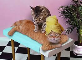 relaxing massage by gunita.