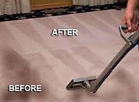 NEED A PROFESSIONAL CARPET CLEANER? CALL NOW 587.288.4568