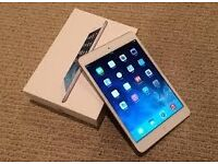 Apple iPad mini 1st Generation 16GB, Wi-Fi, 7.9in - White & Silver