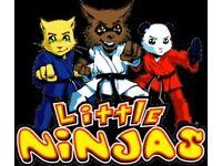 Little Ninjas Classes