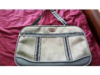 Phoenix travel bag