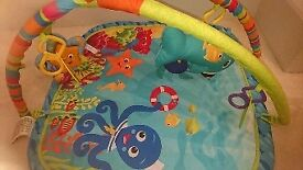 Baby Einstein Under the sea playmat COLLECTION ONLY