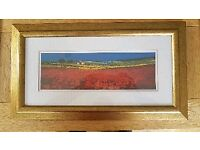 Red Fields Tuscany Framed Print by John Horsewell