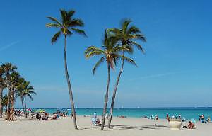 DELUXE CONDO A LOUER > DANIA BEACH, FLORIDA