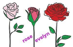 rosevelyn