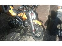 demon x 125cc pit bike