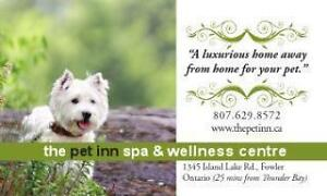 Pet Boarding,daycare,grooming!
