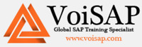 SAP FICO Training with Realtime Project/Free Demo