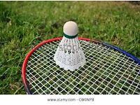 Badminton club looking for new players