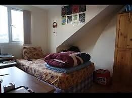 Sunny, quiet double room in Herne Hill