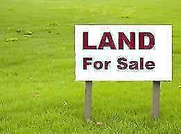 Wanted: Are you looking to sell and want FULL PRICE for your Land Morayfield Caboolture Area Preview