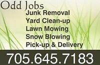 JUNK REMOVAL, SNOW BLOWING