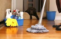Experienced  house cleaner available