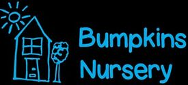 Nursery Nurse Level 3
