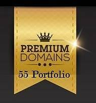55 Premium Domains  - Valued $10k + Free Website Income Training Tweed Heads 2485 Tweed Heads Area Preview