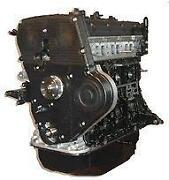 Hyundai Terracan Motor