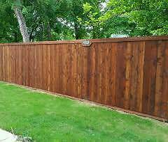 Garden Fence Painter & Grass Cutting & Hedges Trimmed & Weeding