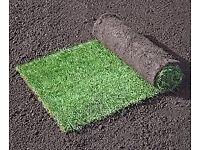 Emerald Lawn Turf