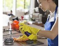 Regular weekly or fortnightly cleans / Domestic & Commercial Cleaning