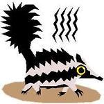 skunk_drummer