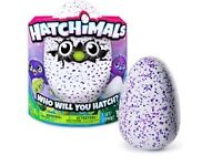 Please read properly! Pink hatchimal for sale.