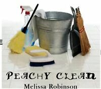 Experienced house/business cleaner