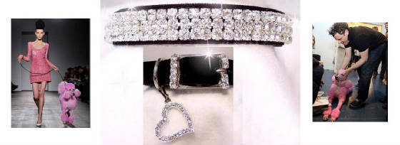 Kims Rhinestone Dog Collar Boutique
