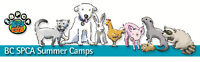 BC SPCA Summer Camps for kids are here!
