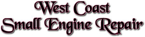 Small engine repair and service!
