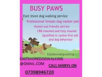 BUSY PAWS Dog Walking Seaham