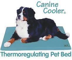 Canine Cooler Thermoregulating Pet Bed Richmond Hawkesbury Area Preview