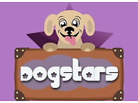 Have you got what it takes to be a Dogstars carer?