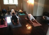 Small Sized Yoga Classes for all ages and levels!