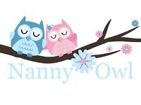 Experienced childminder and night nanny offering overnight care service.
