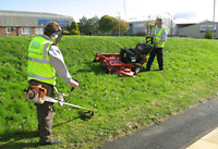 Commercial Grass Cutting - London and Areas!