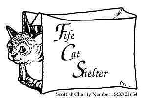 Fife Cat Shelter
