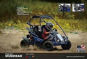 POLARIS / HAMMERHEAD DUNEBUGGIES ATV'S, UTV'S GO KART - ALL NEW London Ontario image 3