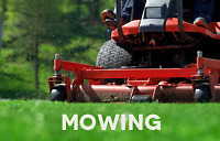 Prince Edward County Lawn Care and Grass cutting