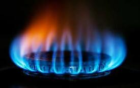 Energy Sales Advisor
