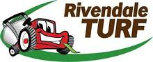 RIVENDALE TURF Inverell Inverell Area Preview
