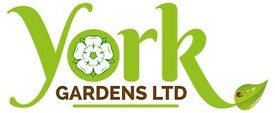 Experienced Gardener