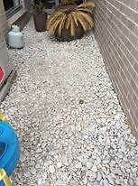 Medium sized garden pebbles 2m x 5m Randwick Eastern Suburbs Preview