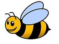 Belfast Busy Bees Cleaning Company- Best Value for Money- Domestic and Office Cleaning