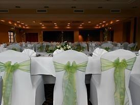 APPLE GREEN organza sashes for sale