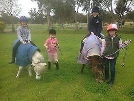 SCHOOL HOLIDAY HORSE RIDING DAY CAMPS - BALDIVIS Baldivis Rockingham Area Preview