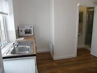 Studio flat, Garden, Seperate Entrance, Newly Decorated - £575